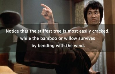 """""""... Notice that the stiffest tree is most easily cracked, while the bamboo or willow survives by bending with the wind""""- BRUCE LEE"""
